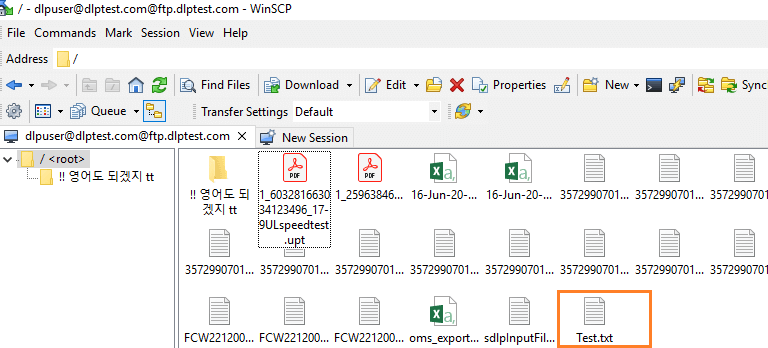 test-txt-file-inside-winscp-jmeter