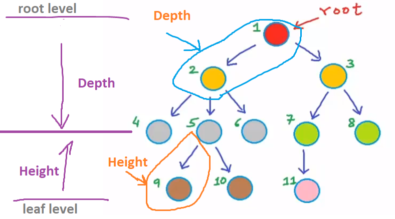 tree-data-structure-with-nodes-depth-and height